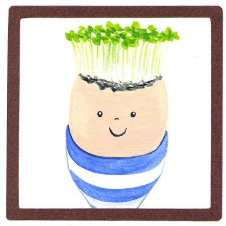 How to make a cress man using an egg shell