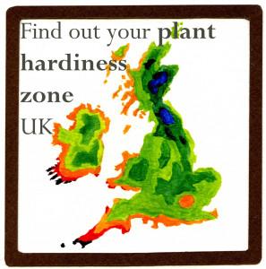 UK-Hardiness-E