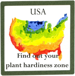 USA-climate-E