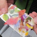 Colour-palette2-E