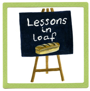 Website lessons