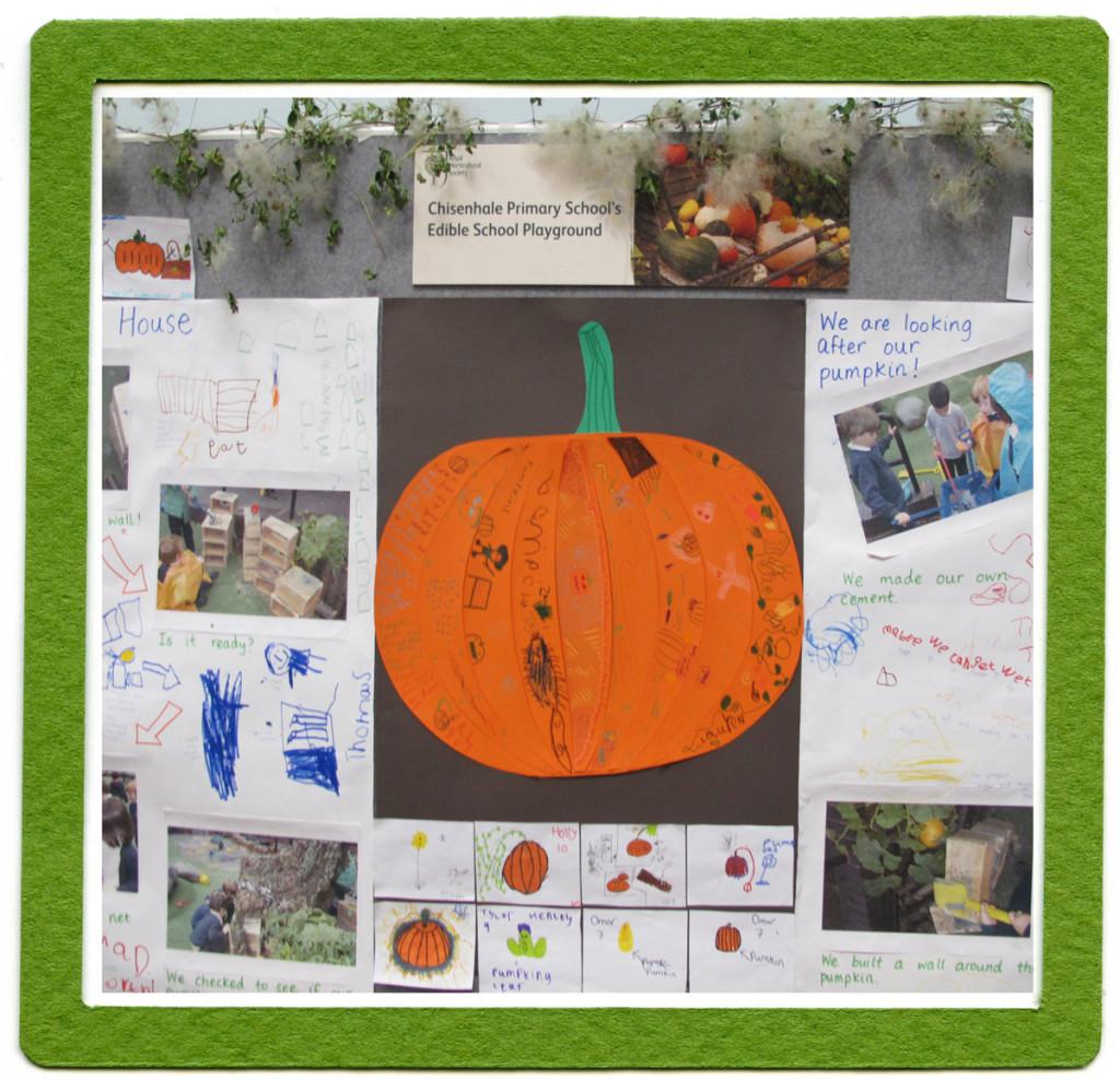 Pumpkin-button-E